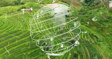 IMPACT ANALYSIS: SGX announces climate change road map for companies